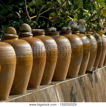 A row of large pickling jars on a garden wall