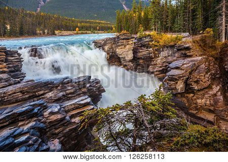 Canada, Jasper National Park. Powerful Athabasca picturesque waterfall in the mountains and forests