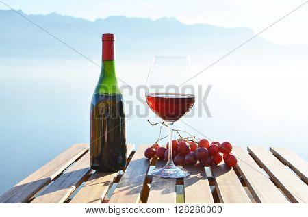 Wine against sky in Lavaux, Switzerland