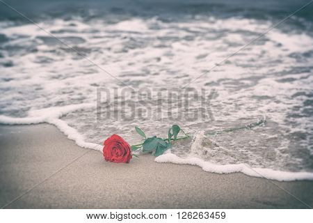 Waves washing away a red rose from the beach. Concept of romantic love, romance, but may also symbolize a loss, melancholy, memory of the past etc. Vintage