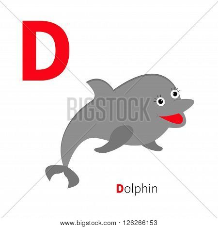 Letter D Dolphin. Zoo alphabet. English abc with animals Education cards for kids Isolated White background Flat design Vector illustration