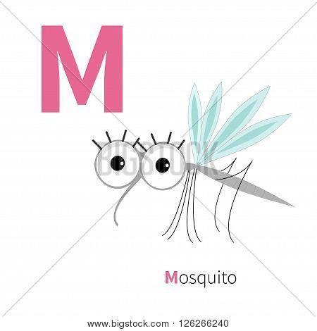 Letter M Mosquito Zoo alphabet. Insect English abc with animals Education cards for kids Isolated White background Flat design Vector illustration Vector illustration