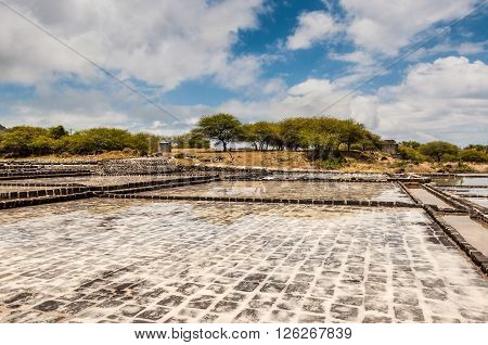 Tamarin Mauritius - December 8 2015: Salt extraction on the island of Mauritius.