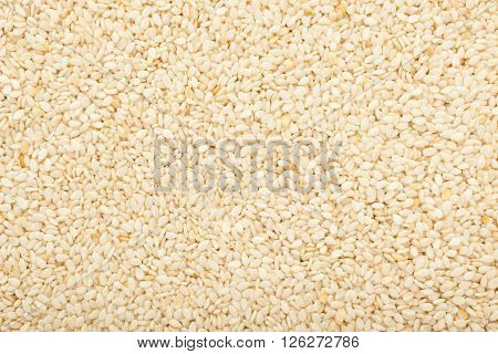 Closeup of lots of white sesame seeds