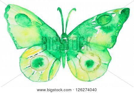 Abstract Watercolor hand drawn green butterfly. Hand painted watercolor butterfly in Hires.  Perfect for wedding invitations, greeting cards, quotes, blogs, posters and logo.