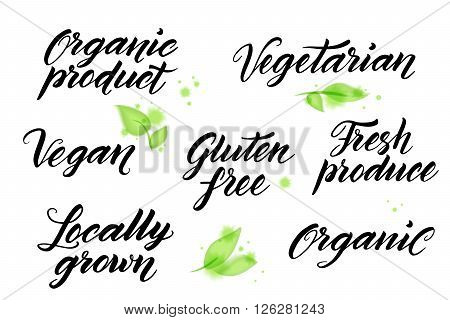 Hand drawn healthy food brush letterings. Organic, organic product, gluten free, vegan, locally grown, vegetarian, fresh produce. Label, logo template isolated on white background with watercolor leaves elements.
