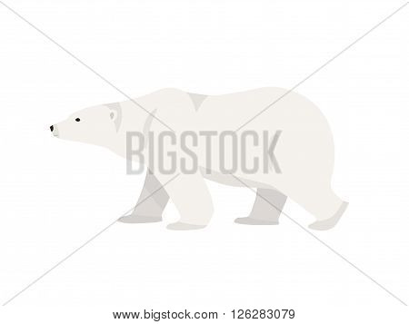 Hand drawn illustration of polar bear. Walking or standing polar bear, side view. Flat style