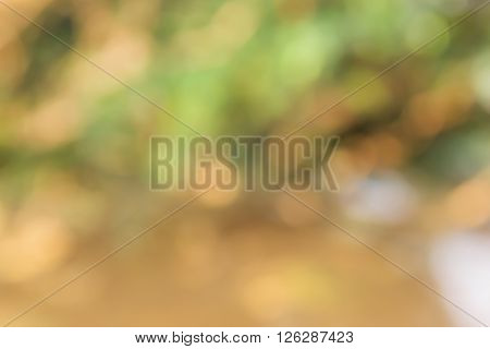 Dreamy Soft Glow Nature Green And Light Brown Romantic Mood Background