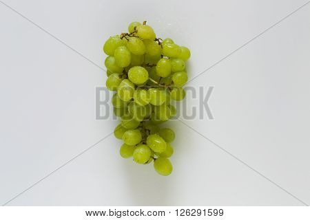 Bunch Of Grapes With Water Drops