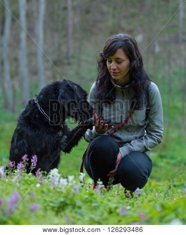 Girl sitting with dog on meadow. Friendship between woman and dog.