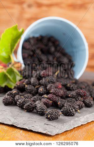 Black mulberries spilt on a slate board. Shallow dof