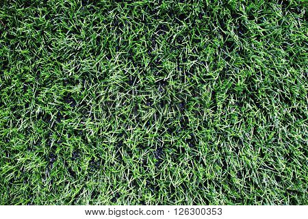 Detail Of  Plastic Grass, Artificial Green Turf Texture Background