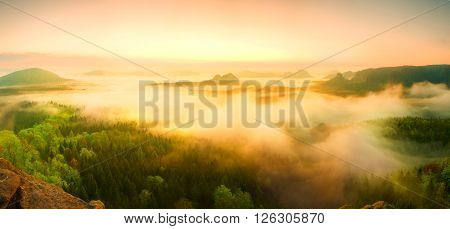 Landscape Misty Panorama. Fantastic Dreamy Sunrise Above Fairy  Misty Valley