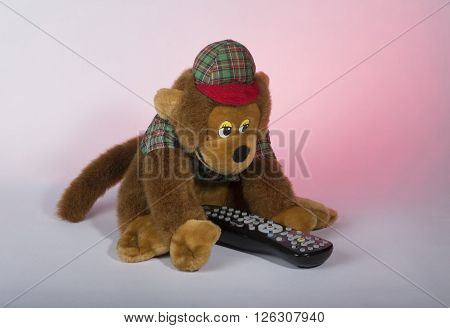 toy brown monkey in the cap holds the TV remote
