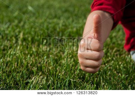 hand in ok sign on green grass background ** Note: Soft Focus at 100%, best at smaller sizes