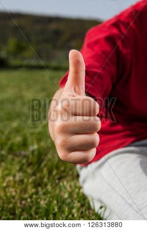 hand in ok sign on green grass background