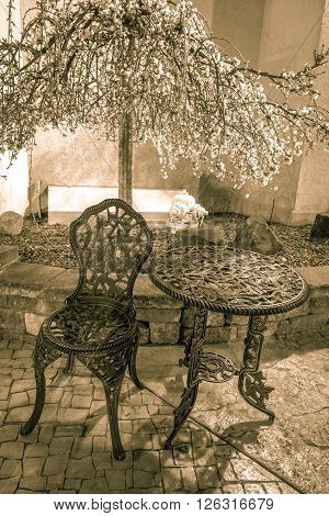 Outdoor Cafe Seating. Outdoor seating under a flowering tree in vertical orientation.