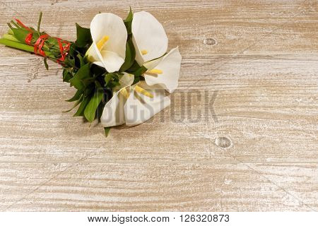 White calla lilies on the wooden background