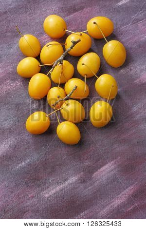 Yellow mirabelle plum fruits over painted textile background. Overhead view.