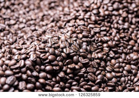 Coffee series : Dark roasted coffee beans background