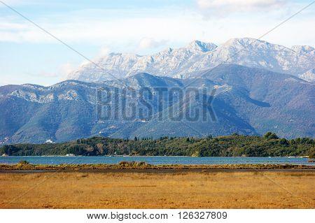 Autumn landscape in saltmarsh near city of Tivat, Montenegro