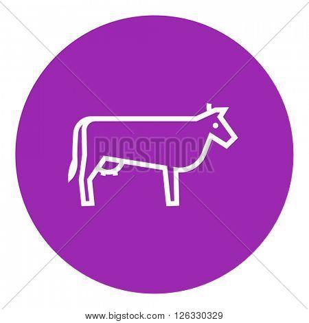 Cow line icon.