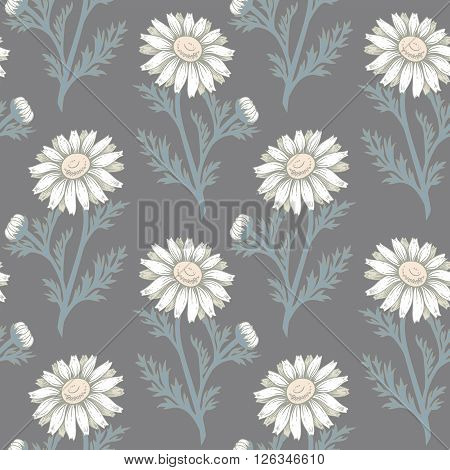 Seamless vector pattern. Illustration of chamomile flowers. Designs for textiles upholstery fabric interior curtains paper packaging wallpaper. Floral ornament.