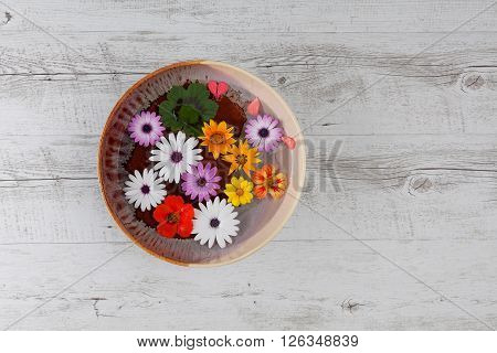 Colorful Flowers In Ceramic Bowl