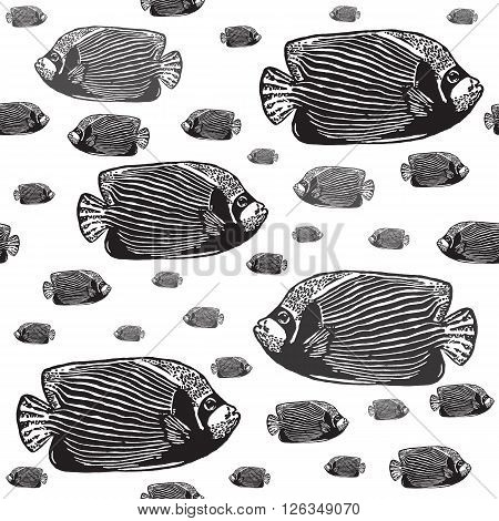 Emperor angelfish black and white seamless vector pattern. Realistic engraved style of fishes on white background.