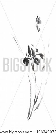 Wild Iris flower Japanese style original sumi-e ink painting. Great for greeting cards or texture design.