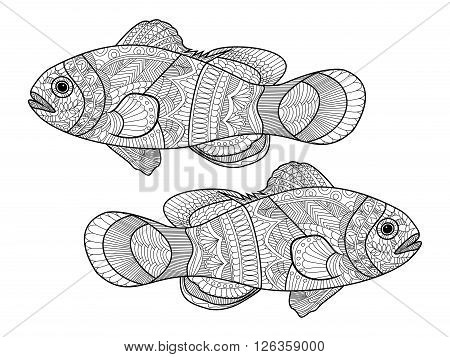 Clown fish coloring book for adults vector illustration. Anti-stress coloring for adult. Zentangle style. Black and white lines. Lace pattern