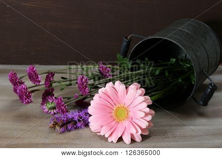 A vase with pink Gerber Daisy and purple small chrysanthemums on wooden background.