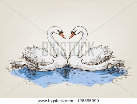 Two swans on lake love symbol