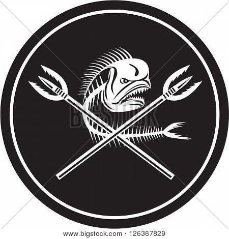 Illustration of a skull of dorado dolphin fish mahi mahi or mahi-mahi with crossed primitive spearfishing spear set inside circle on isolated background done in retro style.