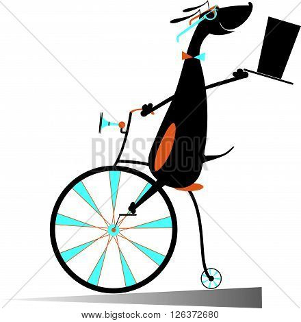 Cartoon dog rides a bike. Smiling dog rides a penny-farthing and looks healthy and happy