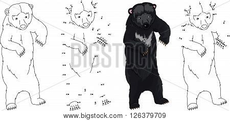 Cartoon Asiatic Black Bear. Coloring Book And Dot To Dot Game For Kids