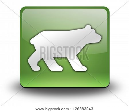 Image Photo Icon Button Pictogram with Bear symbol