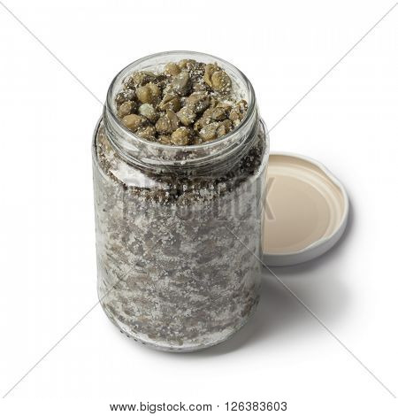 Salted capers in a glass jar on white background