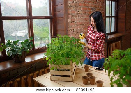 Perfect hobby. Portrait of an attractive smiling female caring her seedlings spraying seedlings with water.