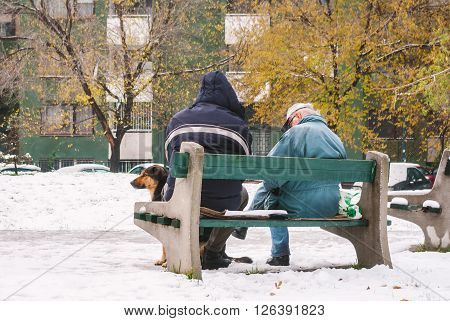 Two Old Man On The Bench At Winter