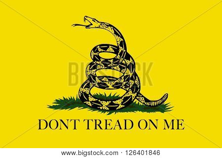 The Gadsden Don't Tread On Me flag Authentic version color and scale