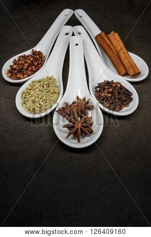 Five Spice With Star Anise Focus