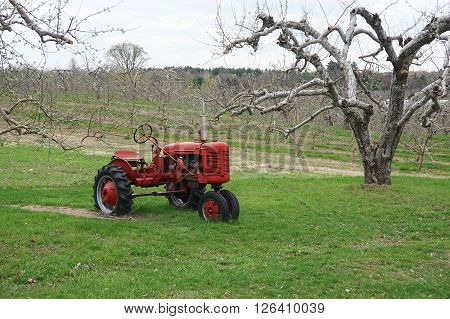 old tractor in spring orchard for design