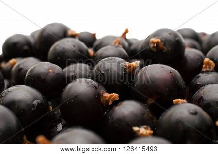 Black currant with leafs top view. black currant background
