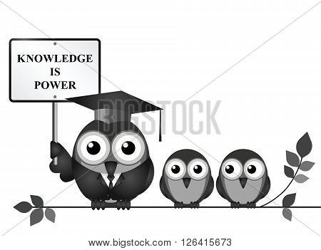 Knowledge is power sign with bird teacher and students perched on a branch isolated on white background with copy space for own text