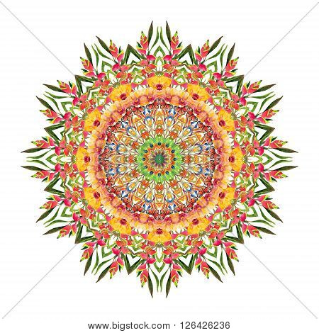 Watercolor tropical floral mandala. Hand painted pattern with exotic flowers butterfly and leaves in vivid colors. Ornate lace pattern for nature design. Natural lace isolated on white background.