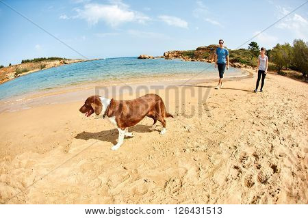 family with dog walking on the sunny beach at the sunrise. Area Chania city, Crete, Greece.