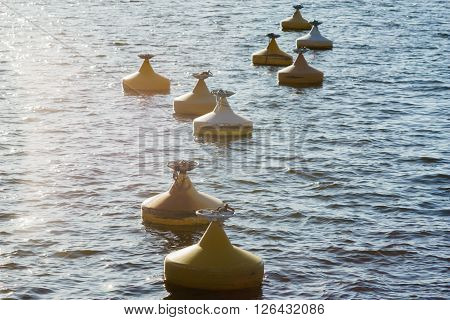 Lots of yellow buoys floating on water in marina