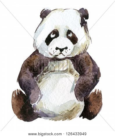 Watercolor giant panda isolated on white background, hand painted watercolor illustration