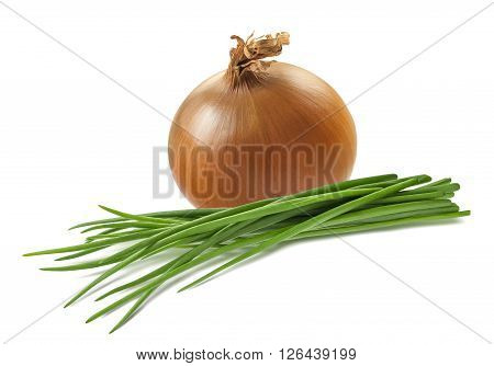 Yellow onion green scallion isolated on white background as package design element